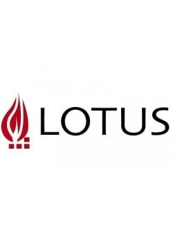 Lotus - датский производитель каминных топок и печей